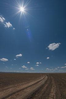Mongolia_DL_20120710_DSC5789.jpg
