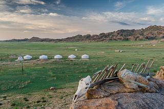 Mongolia_DL_20120714_DSC5825.jpg