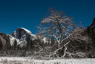 DL_20151226_DSC2819_Yosemite_Full-Moon_Night.jpg